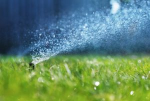 well-irrigation-services
